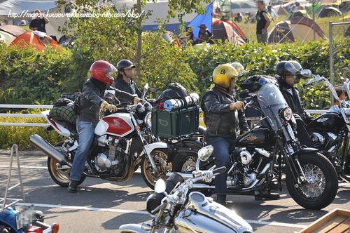 Harley11_111008