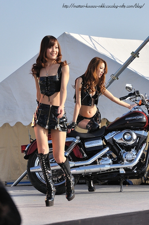 Harley16_111008