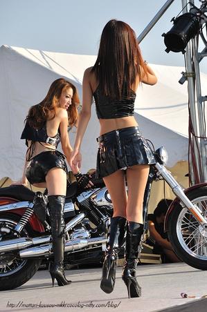 Harley17_111008