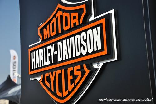 Harley19_111008