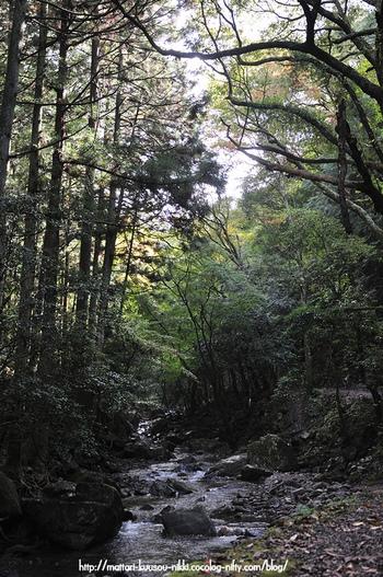 Kuragari1_111023